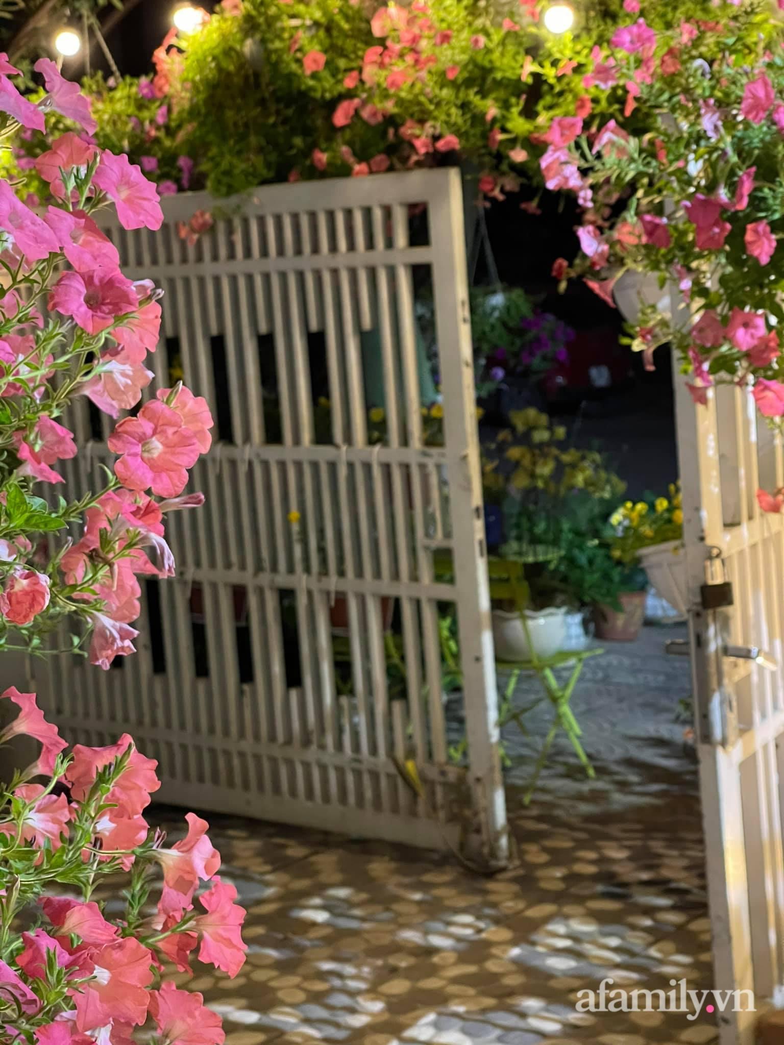 Người đàn ông dành cả bốn mùa phủ kín hoa rực rỡ quanh nhà ở Hà Nội - Ảnh 2.