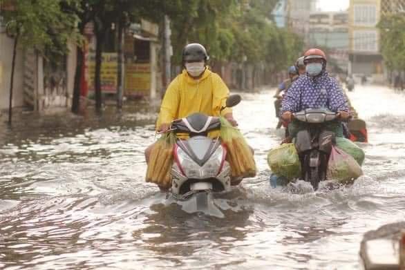 """Sài Gòn """"phố cũng thành sông"""", cây xanh bật gốc la liệt chỉ sau 1 đêm  - Ảnh 6."""