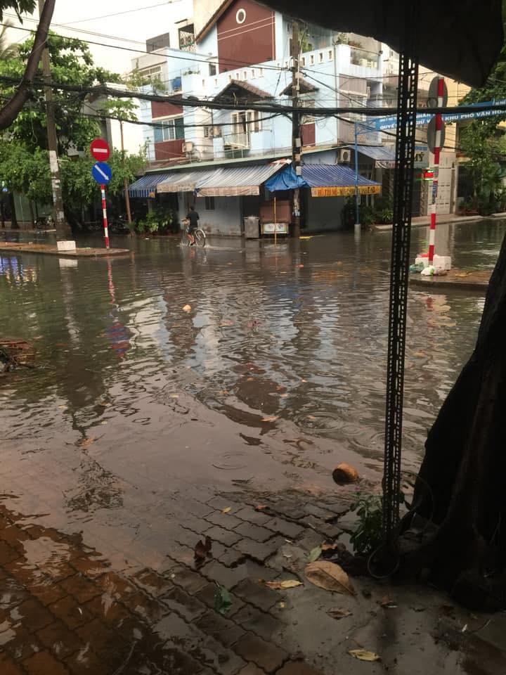 """Sài Gòn """"phố cũng thành sông"""", cây xanh bật gốc la liệt chỉ sau 1 đêm  - Ảnh 5."""