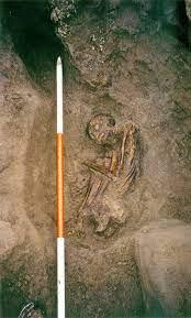 Phát hiện xác ướp 3.000 năm tuổi co quắp như bào thai dưới ngôi nhà cổ, các nhà khảo cổ mang về nghiên cứu rồi bàng hoàng biết được sự thật về 6 mạng người - Ảnh 3.
