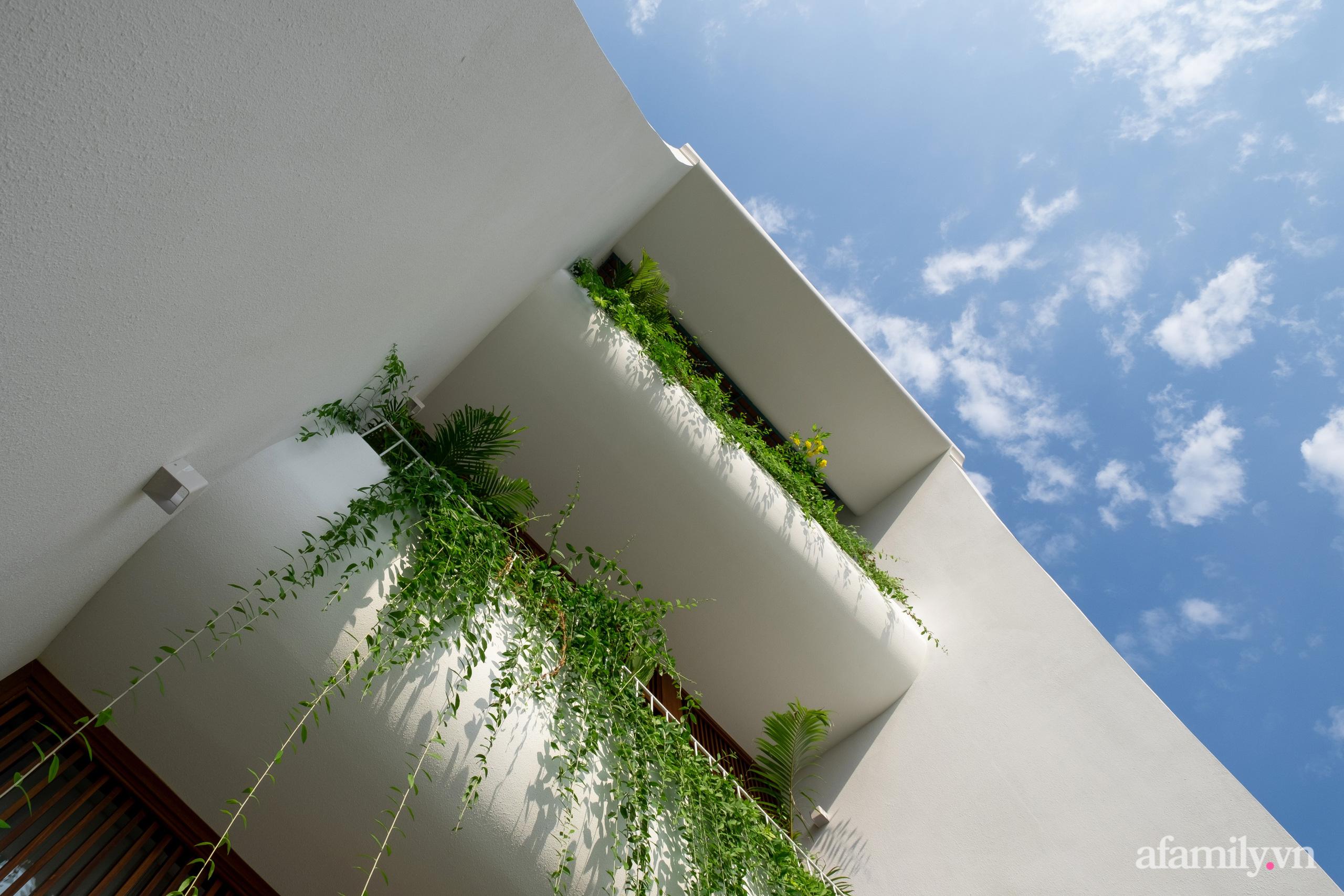 Nhà phố hướng Tây vẫn mát mẻ không cần điều hòa nhờ thiết kế gần gũi với thiên nhiên ở Nha Trang - Ảnh 3.