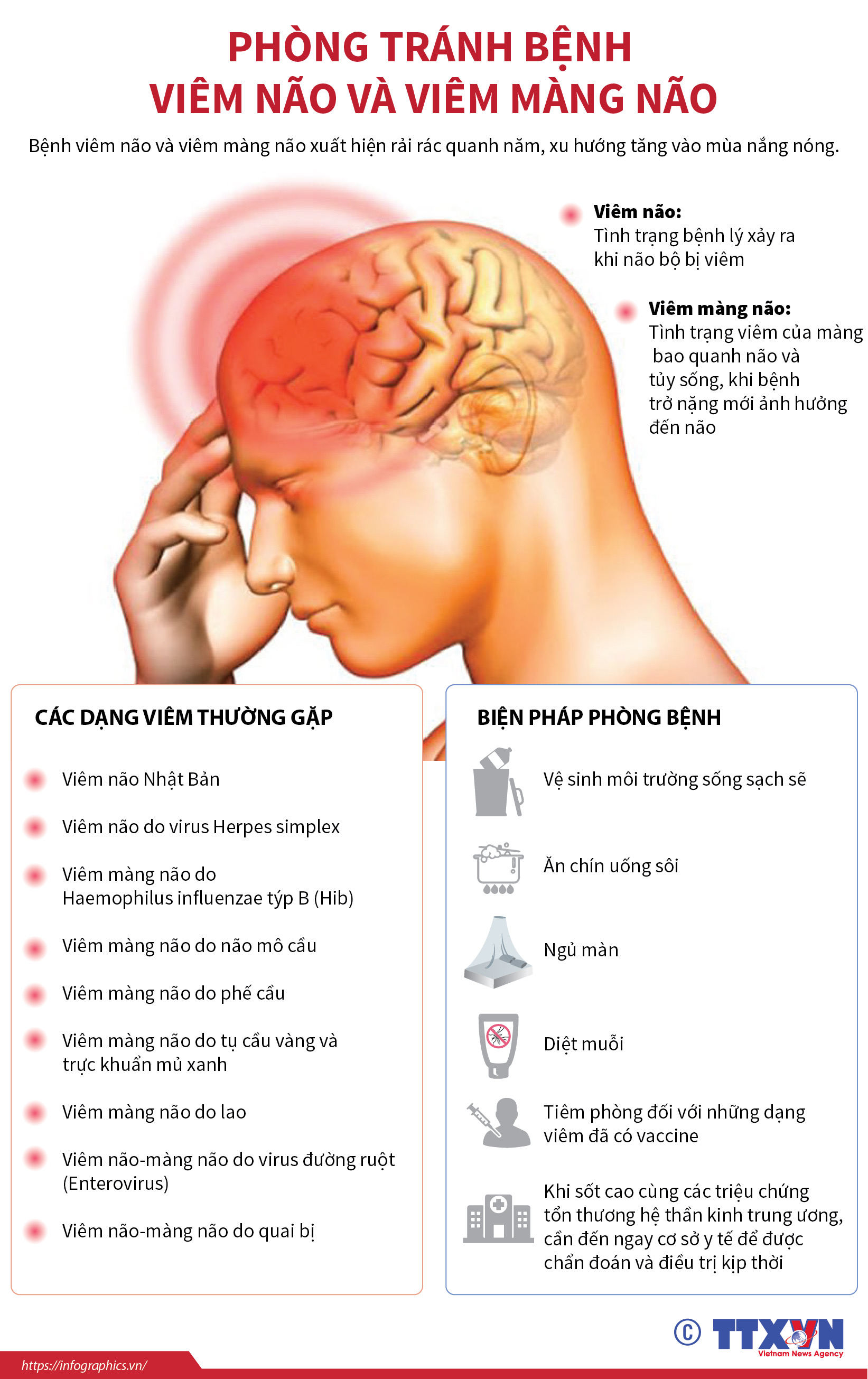 6 biện pháp cần làm ngay để phòng viêm não virus trong mùa hè - Ảnh 1.