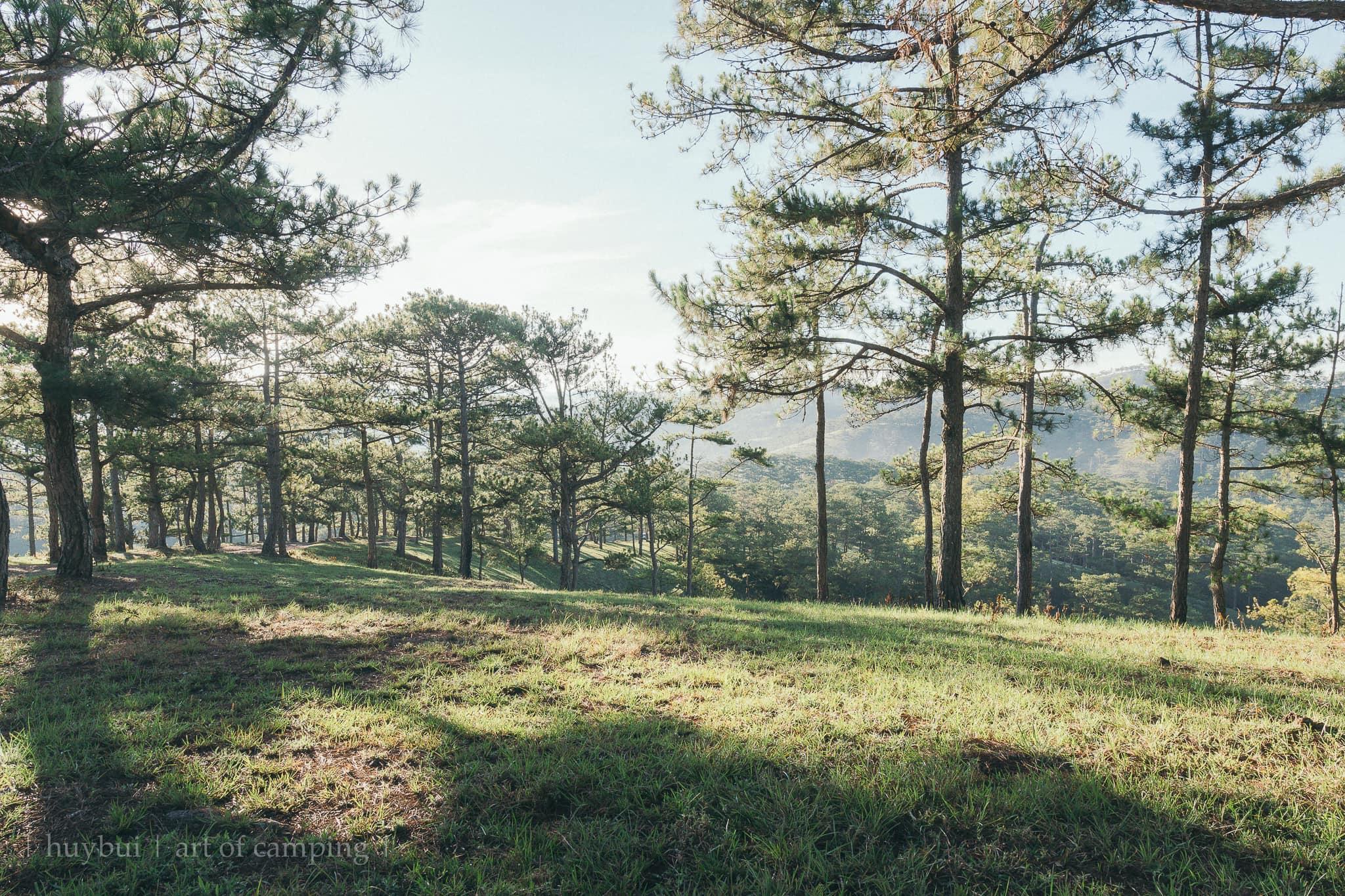 Muốn đi cắm trại từ núi non đến ven biển trong phạm vi 300km, chẳng thể bỏ lỡ những địa danh vô cùng đẹp, các camper nên chinh phục 1 lần - Ảnh 22.