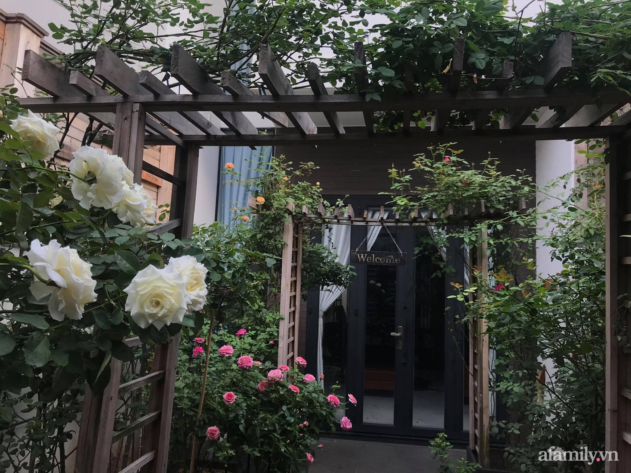 Vườn hồng rực rỡ tỏa sắc hương trước sân nhà đón hè sang của cặp vợ chồng trẻ Sải Gòn - Ảnh 12.