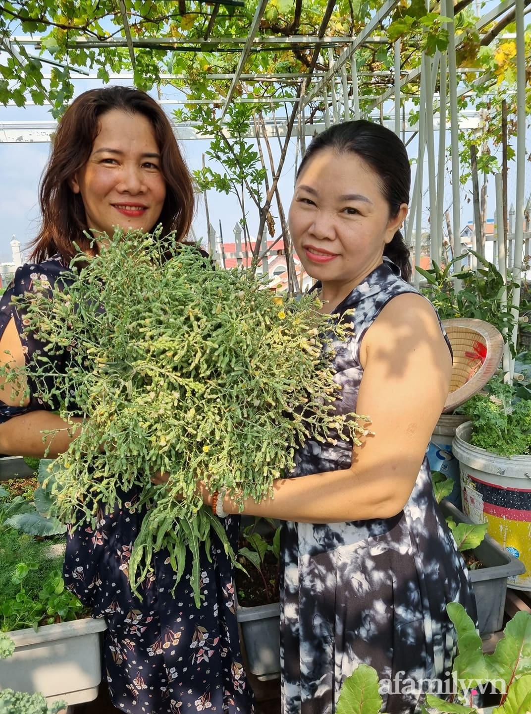 Người phụ nữ đảm đang trồng cả trang trại rau quả sạch trên sân thượng ở Sài Gòn - Ảnh 3.