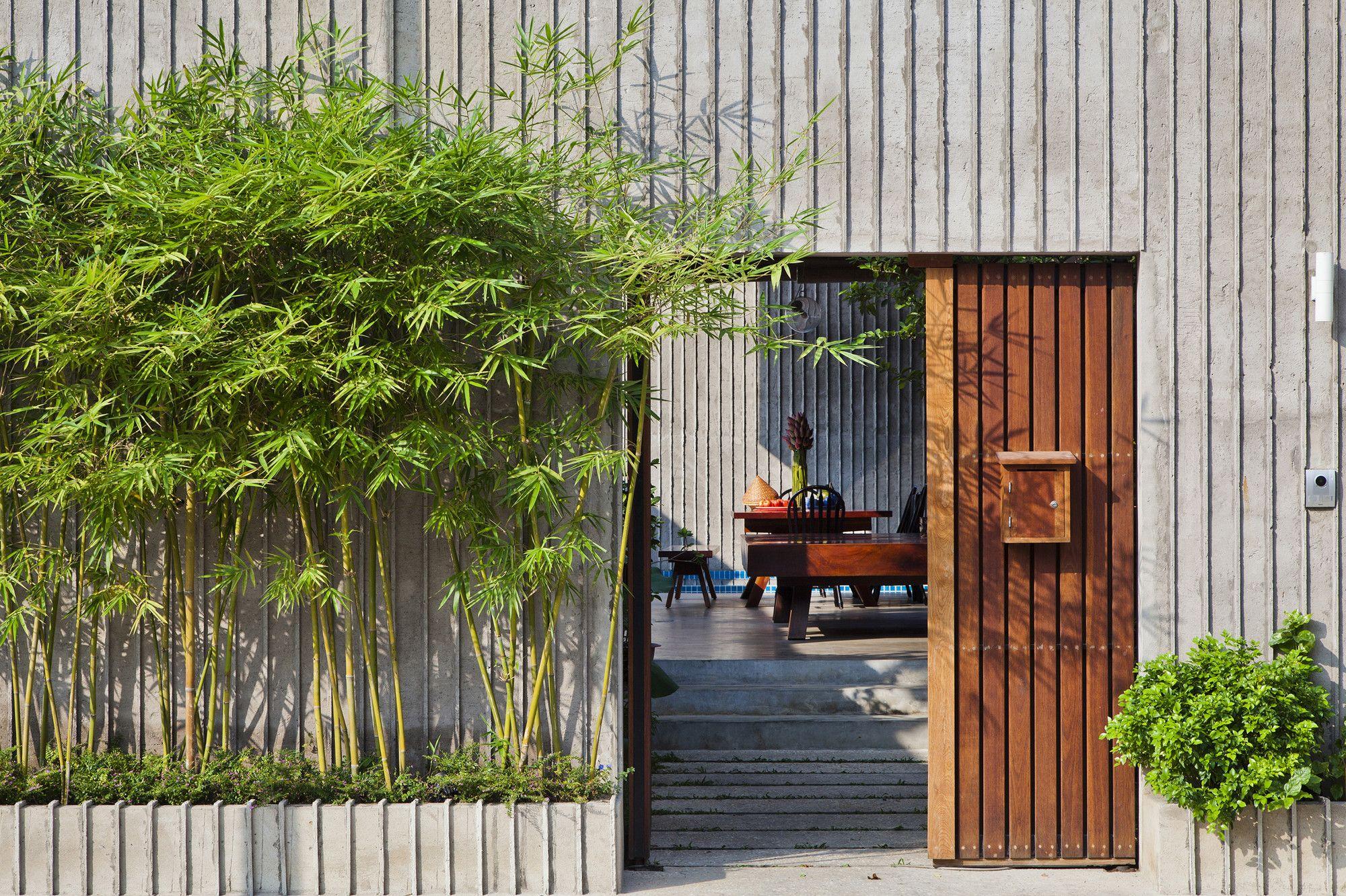 Hướng dẫn những vị trí đặt cây cảnh trong nhà tốt cho phong thủy - Ảnh 2.