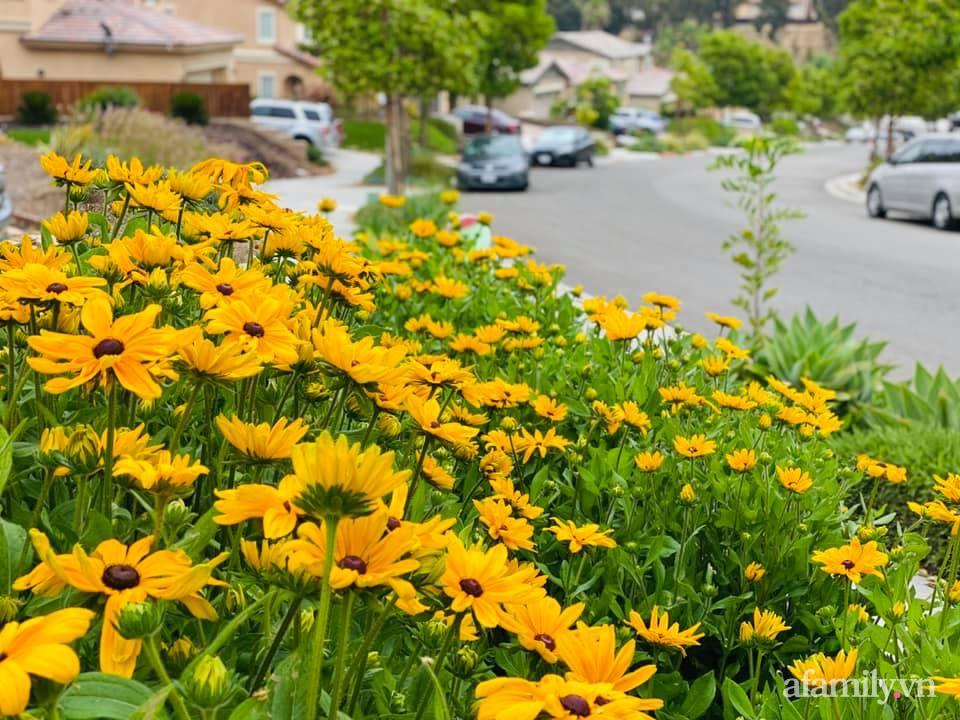 Khu vườn 750m² muôn hoa khoe sắc tỏa hương của mẹ Việt thức đêm chăm cây ở Mỹ - Ảnh 21.