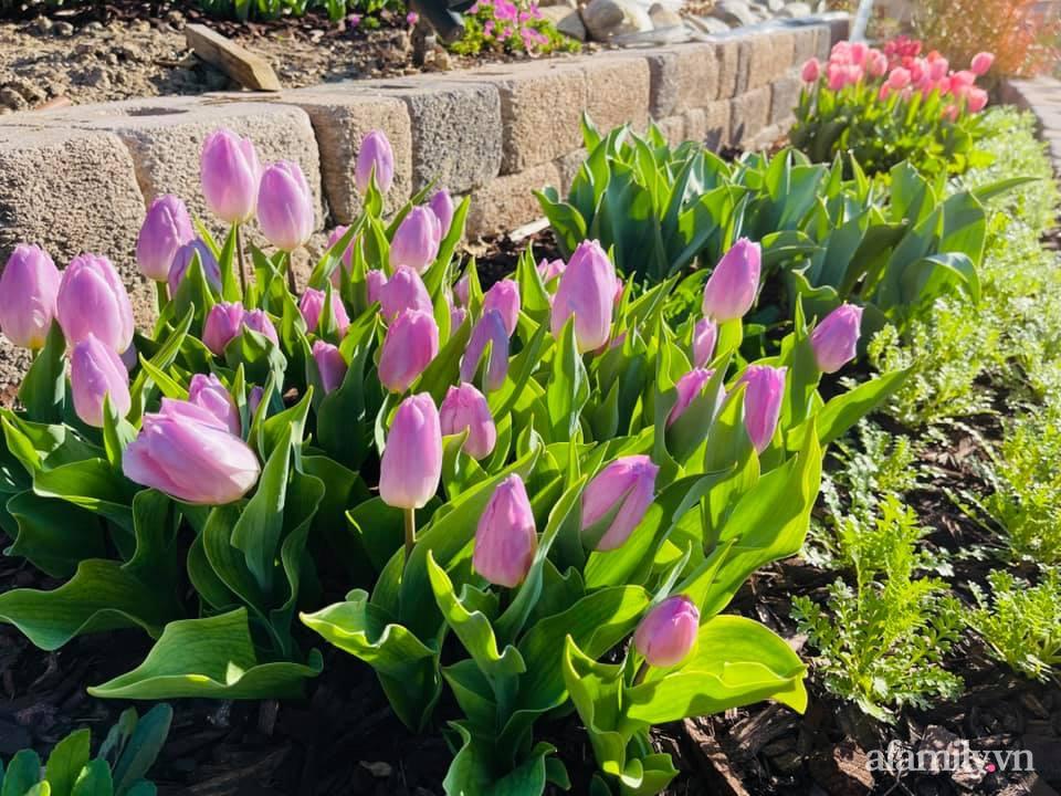 Khu vườn 750m² muôn hoa khoe sắc tỏa hương của mẹ Việt thức đêm chăm cây ở Mỹ - Ảnh 4.