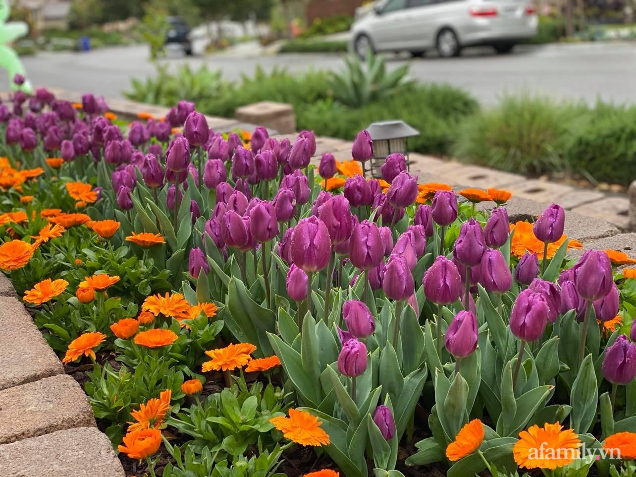 Khu vườn 750m² muôn hoa khoe sắc tỏa hương của mẹ Việt thức đêm chăm cây ở Mỹ - Ảnh 5.
