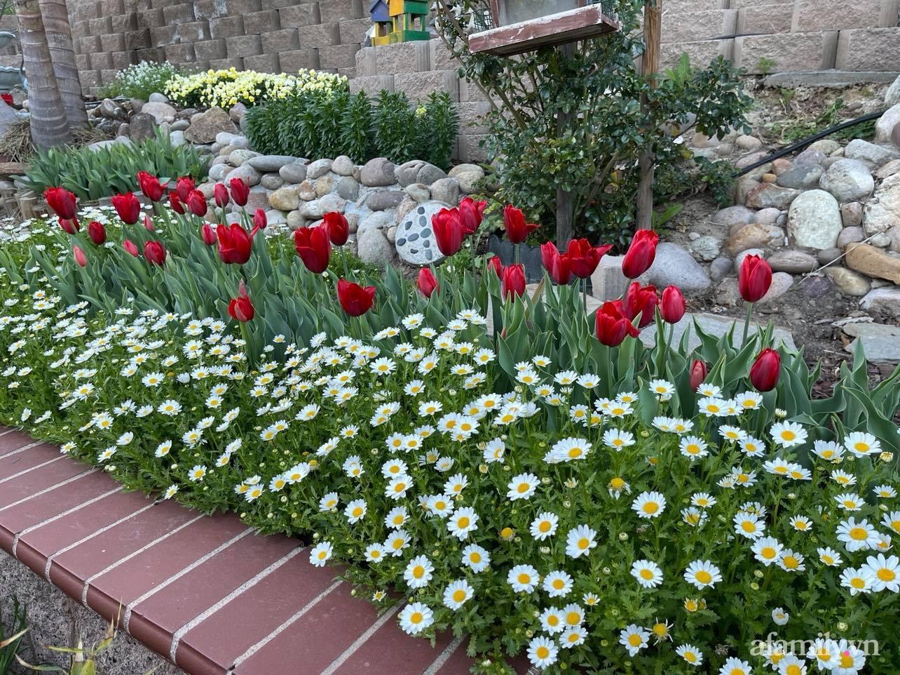 Khu vườn 750m² muôn hoa khoe sắc tỏa hương của mẹ Việt thức đêm chăm cây ở Mỹ - Ảnh 9.