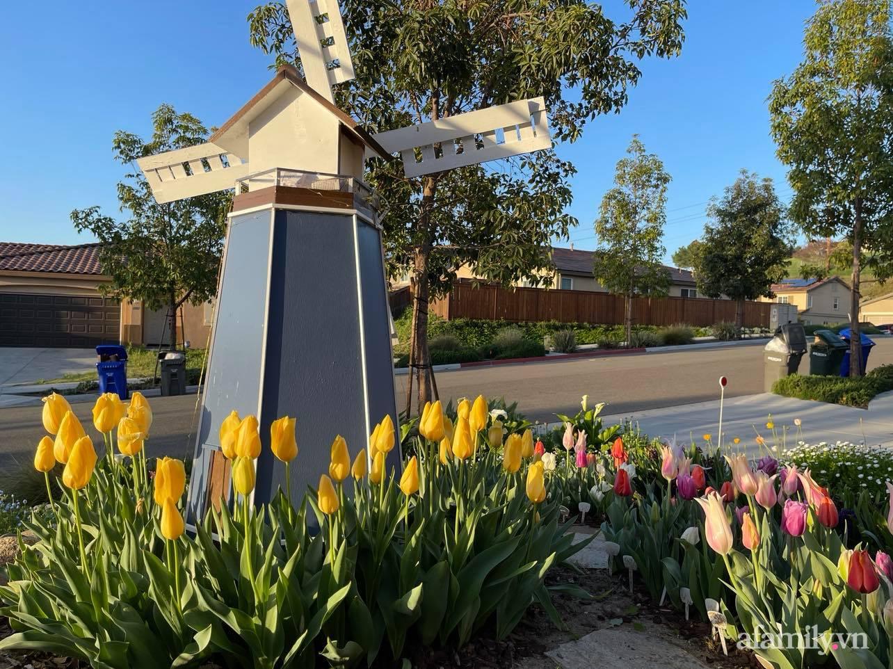 Khu vườn 750m² muôn hoa khoe sắc tỏa hương của mẹ Việt thức đêm chăm cây ở Mỹ - Ảnh 7.