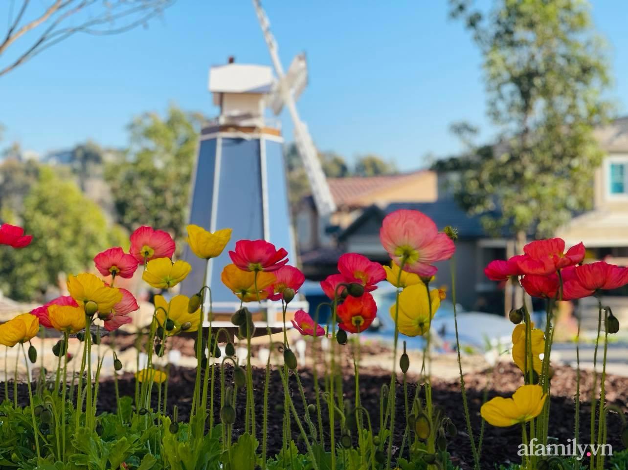 Khu vườn 750m² muôn hoa khoe sắc tỏa hương của mẹ Việt thức đêm chăm cây ở Mỹ - Ảnh 23.