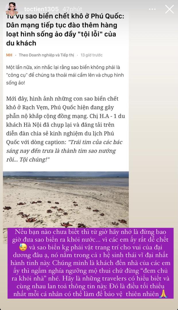 Hết Tóc Tiên đến Phương Khánh lên án hành động chụp ảnh làm chết sao biển: Trực tiếp đặt án tử, gián tiếp huỷ hoại hệ sinh thái - Ảnh 4.