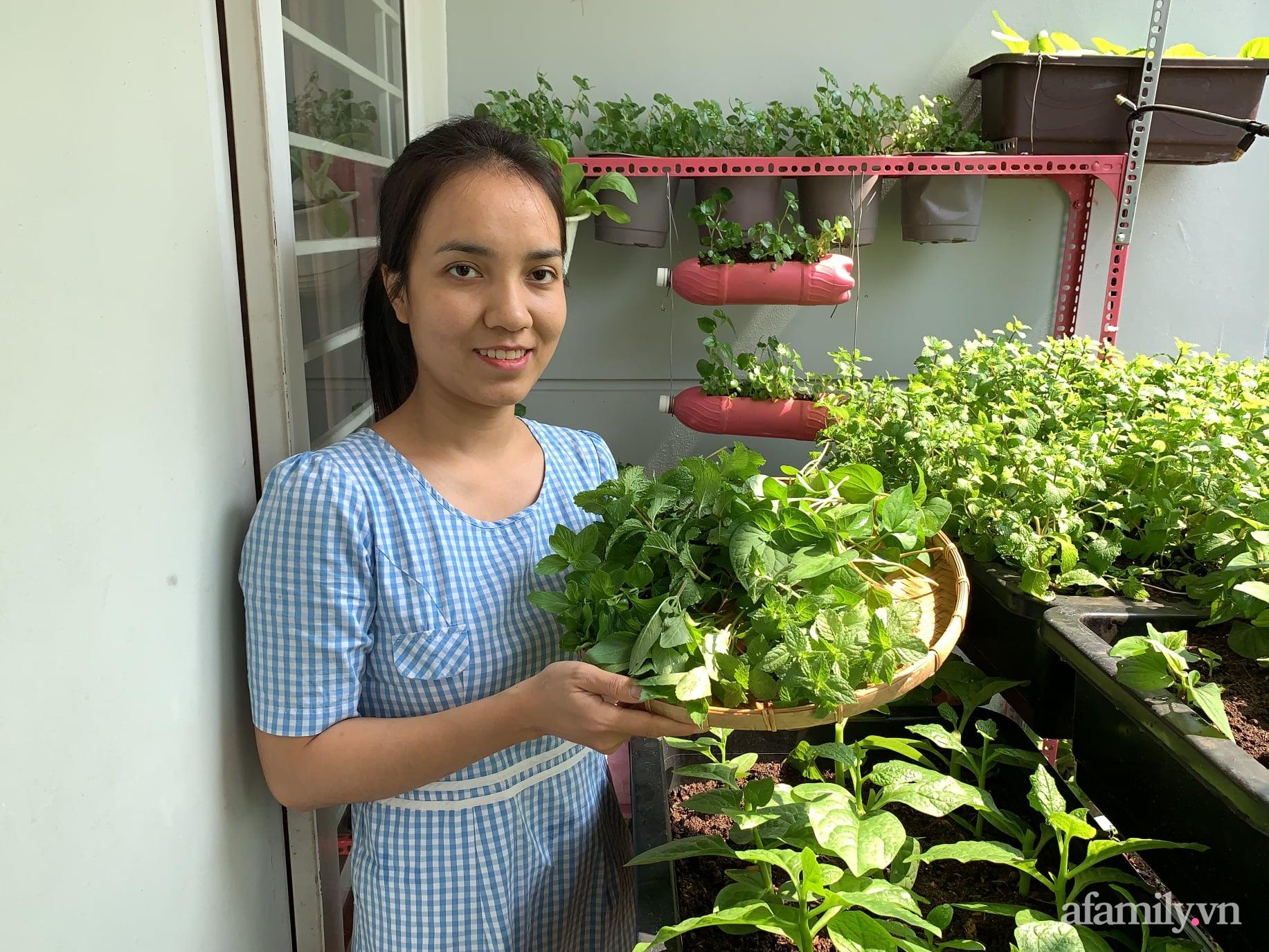 Ban công 3m² phủ kín rau sạch quanh năm tươi tốt của ông bố đảm 3 con ở Bình Thạnh, Sài Gòn - Ảnh 4.