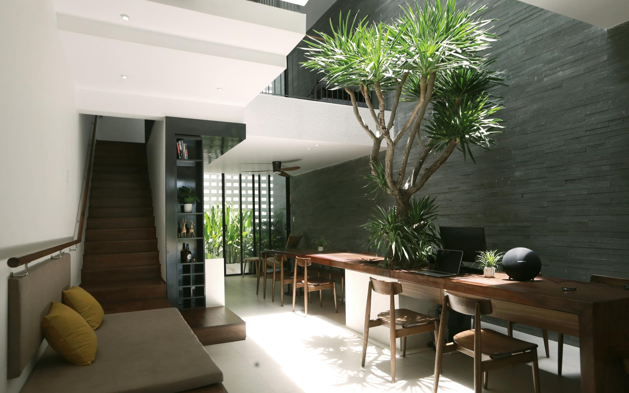 Căn nhà ngập nắng của cặp vợ chồng trẻ sau 10 năm vất vả kiếm tiền ở Đà Nẵng