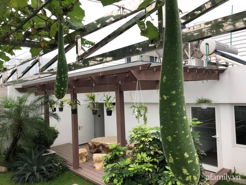 Vườn rau quả sạch 100m2 trên mái nhà của người phụ nữ xinh đẹp ở Hà Nội - Ảnh 8.
