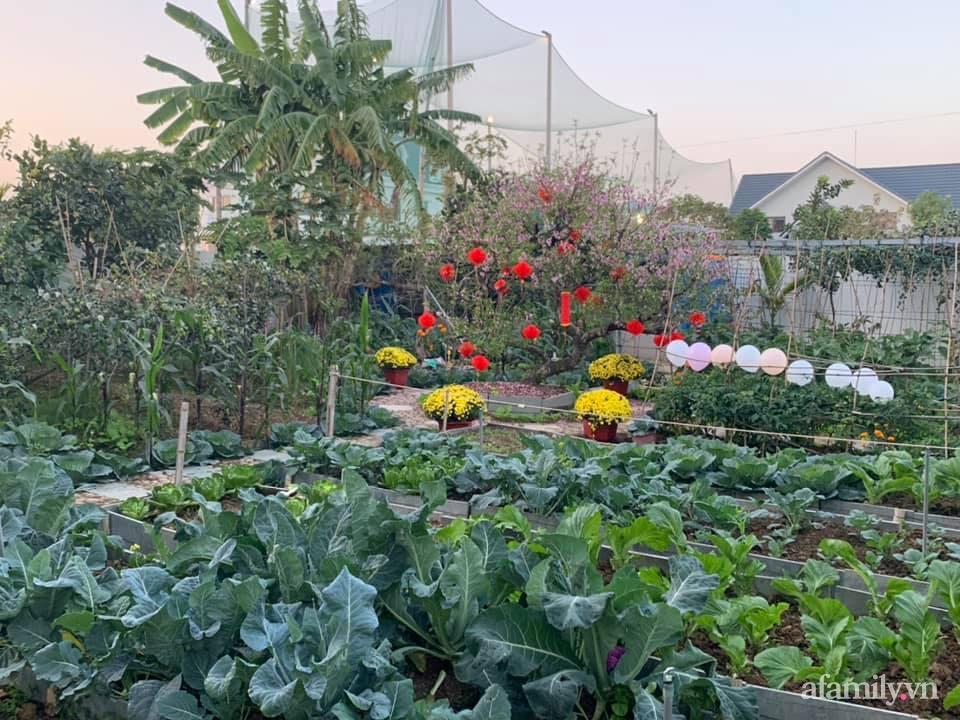 """""""Nông trại"""" rộng 300m2 đẹp như cổ tích với đủ loại hoa và rau quả của mẹ 4 con ở Móng Cái, Quảng Ninh - Ảnh 2."""