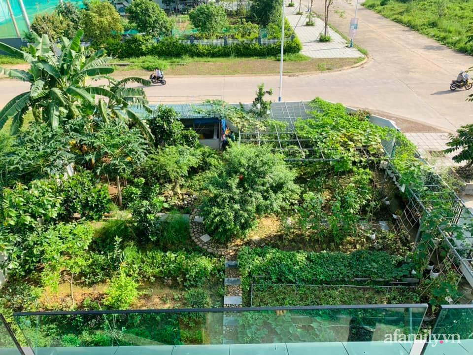 """""""Nông trại"""" rộng 300m2 đẹp như cổ tích với đủ loại hoa và rau quả của mẹ 4 con ở Móng Cái, Quảng Ninh - Ảnh 1."""