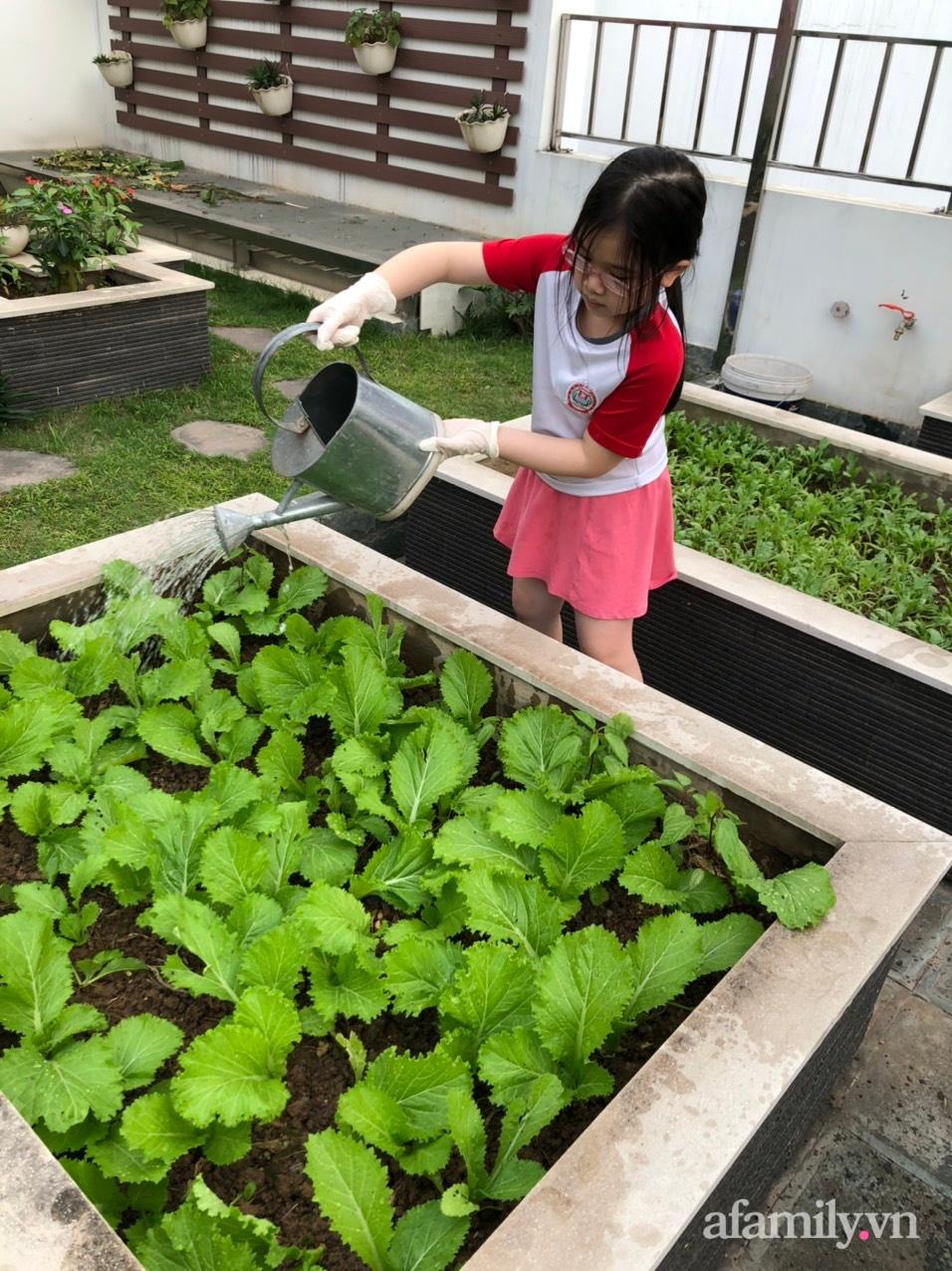 Vườn rau quả sạch 100m2 trên mái nhà của người phụ nữ xinh đẹp ở Hà Nội - Ảnh 15.