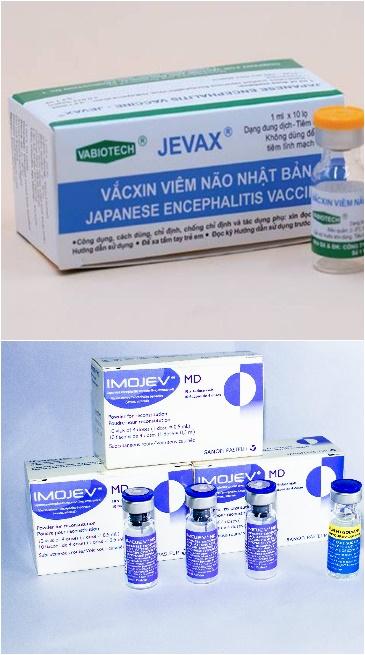 Khác biệt giữa 2 căn bệnh nguy hiểm, hay gặp ở trẻ nhỏ: Viêm não mô cầu và viêm não Nhật Bản - Ảnh 7.