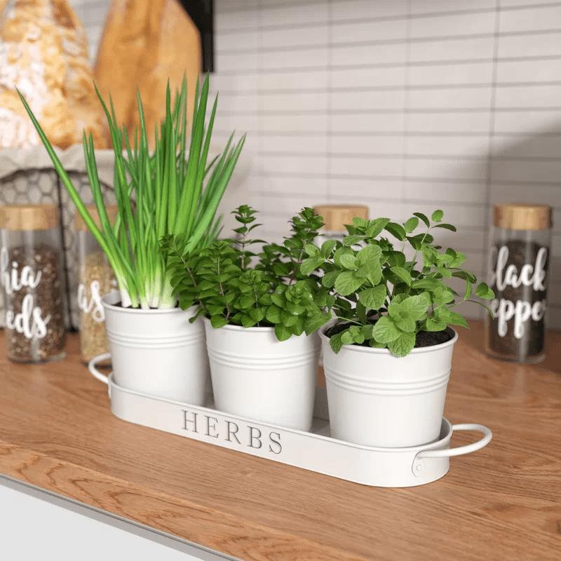 Những cách siêu đơn giản mang hơi thở mùa hè vào căn bếp nhỏ - Ảnh 1.