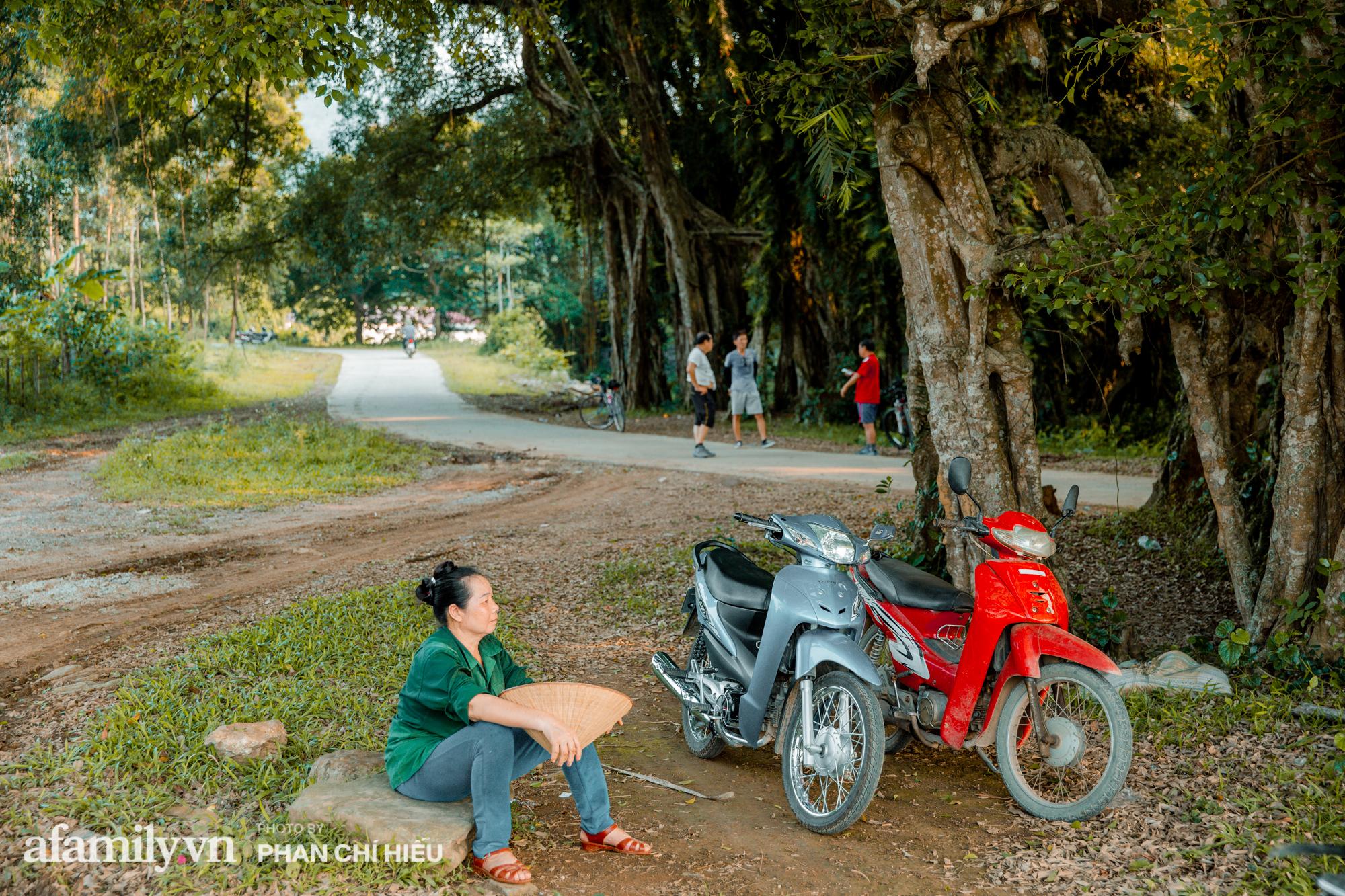Ngôi làng độc nhất Việt Nam sở hữu chiếc cổng từ cây đại thu 800 năm tuổi, từng là bối cảnh cực ấn tượng trong những bộ phim về làng quê Việt Nam - Ảnh 2.