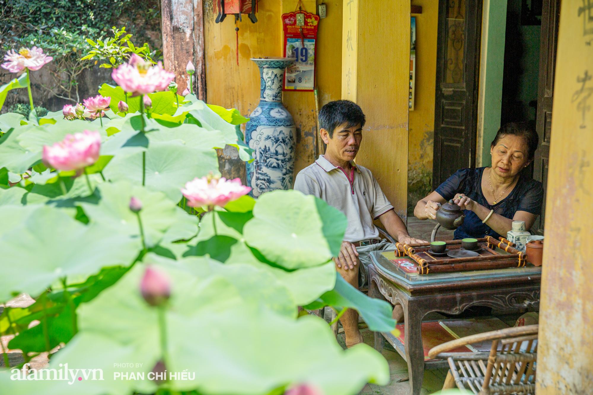 Đôi vợ chồng sở hữu căn nhà cổ 100 năm tuổi tại Hà Nội sưu tập và trồng hàng trăm gốc sen cung đình Huế quanh nhà khiến ai đi qua cũng phải trầm trồ - Ảnh 12.