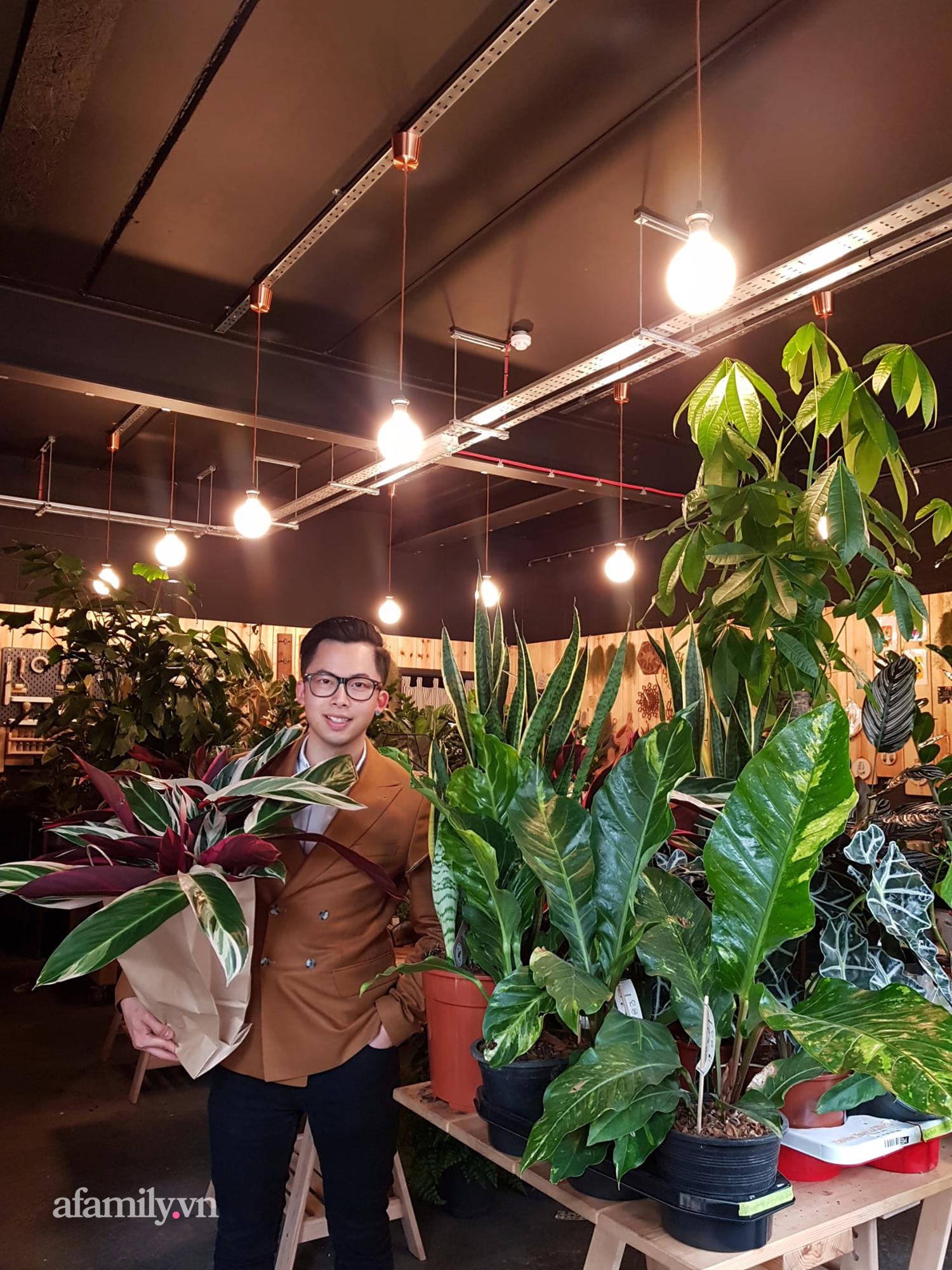 """BST hơn 200 cây kiểng lá của chàng kiến trúc sư người Việt tại Anh, gần như sống và nằm ngủ cùng cây mỗi ngày """"hoang mang về mức giá bạc tỷ được bán tại Việt Nam""""  - Ảnh 8."""