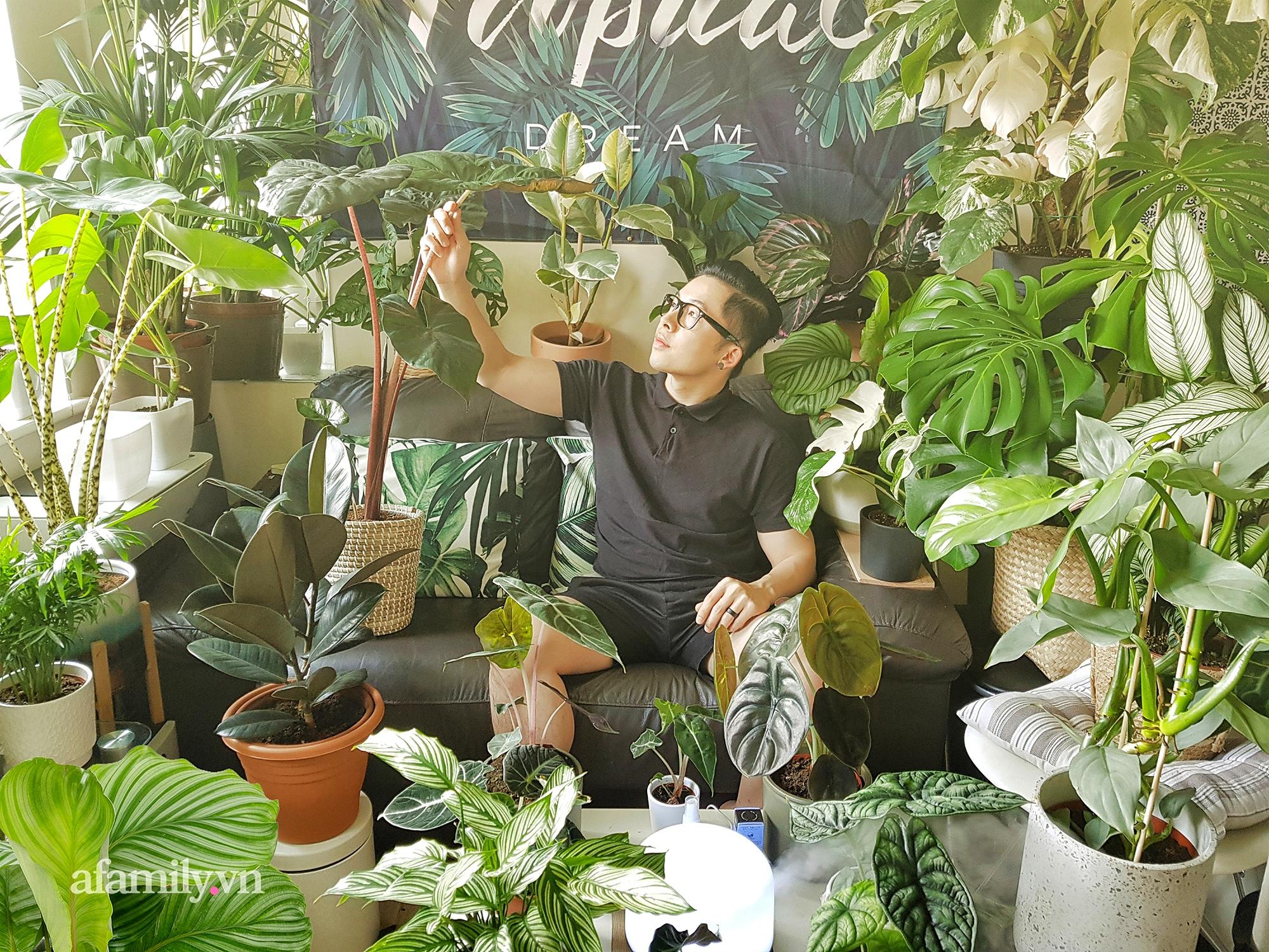 """BST hơn 200 cây kiểng lá của chàng kiến trúc sư người Việt tại Anh, gần như sống và nằm ngủ cùng cây mỗi ngày """"hoang mang về mức giá bạc tỷ được bán tại Việt Nam""""  - Ảnh 4."""