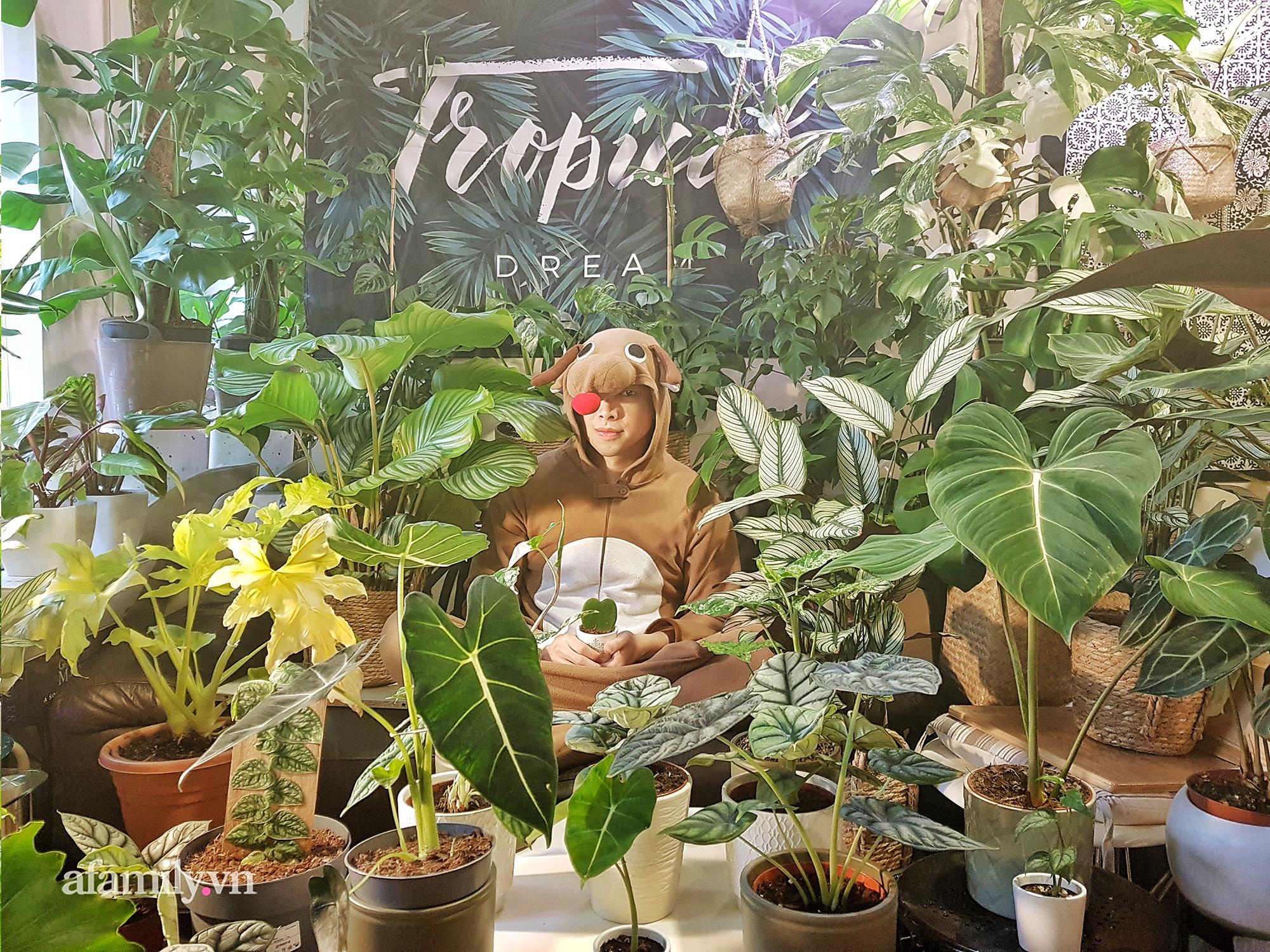 """BST hơn 200 cây kiểng lá của chàng kiến trúc sư người Việt tại Anh, gần như sống và nằm ngủ cùng cây mỗi ngày """"hoang mang về mức giá bạc tỷ được bán tại Việt Nam""""  - Ảnh 10."""