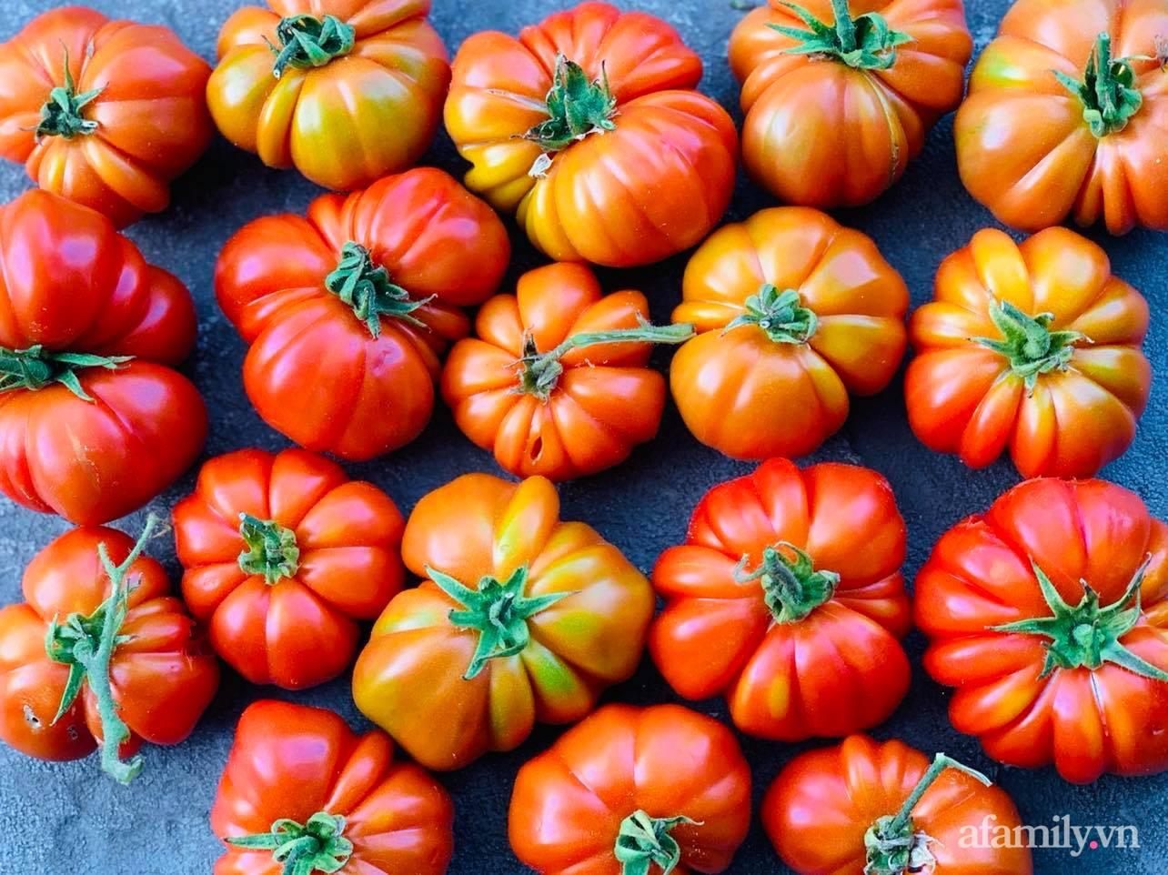 Khu vườn 800m² phủ kín đủ loại rau quả sạch của mẹ Việt đảm yêu cây - Ảnh 24.