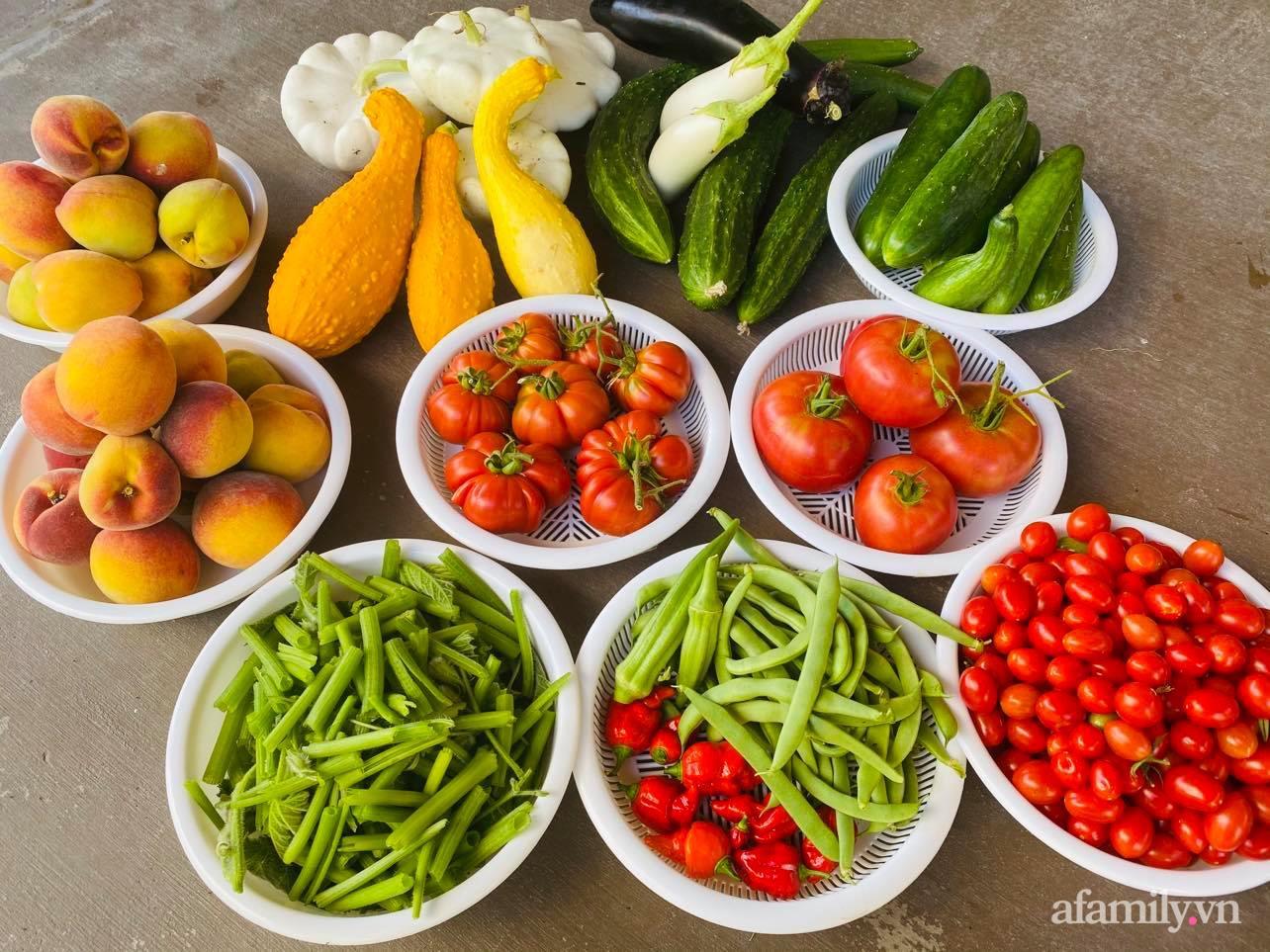Khu vườn 800m² phủ kín đủ loại rau quả sạch của mẹ Việt đảm yêu cây - Ảnh 21.