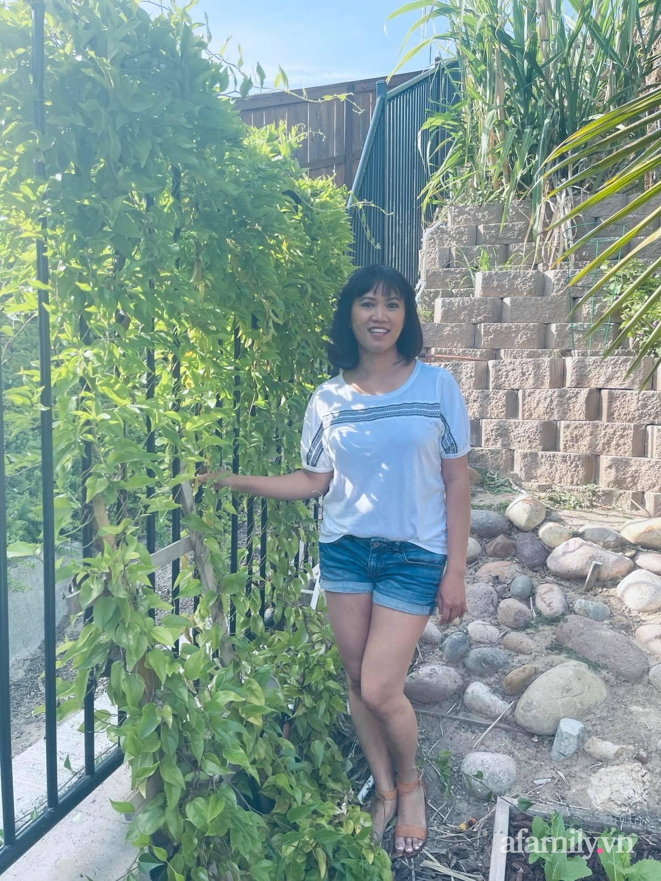 Khu vườn 800m² phủ kín đủ loại rau quả sạch của mẹ Việt đảm yêu cây - Ảnh 6.