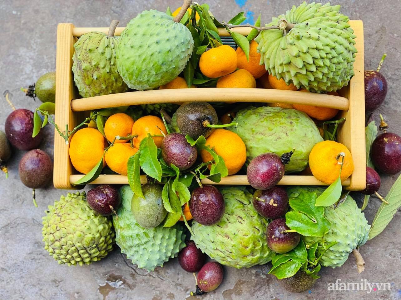 Khu vườn 800m² phủ kín đủ loại rau quả sạch của mẹ Việt đảm yêu cây - Ảnh 19.
