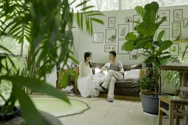 Cặp vợ chồng trẻ lên núi chọn sống cuộc đời bình an trong căn nhà rộng 300m2 - Ảnh 2.