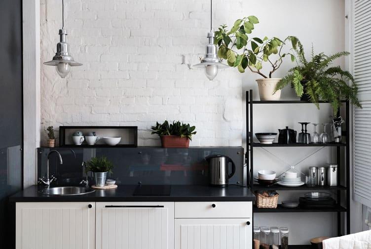 7 loại cây cảnh nên trồng trong nhà bếp vì lọc không khí và khử mùi cực tốt - Ảnh 8.