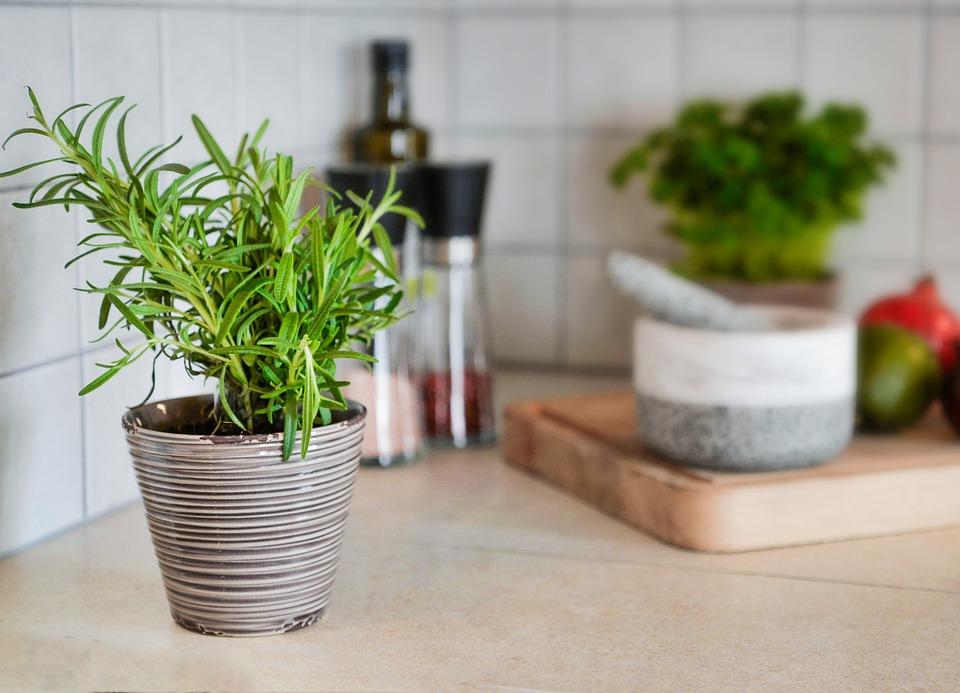 7 loại cây cảnh nên trồng trong nhà bếp vì lọc không khí và khử mùi cực tốt - Ảnh 1.