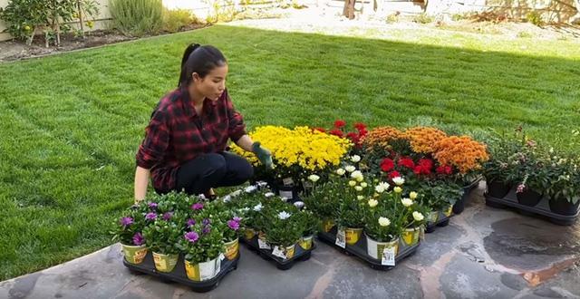Ngắm khu vườn sai trĩu cây ăn trái và hoa rực rỡ trong biệt thự triệu đô ở Mỹ của Phạm Hương - Ảnh 3.