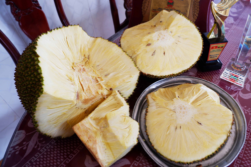 Thân là mít nhưng lại được cắt ra ăn như dưa hấu, nhưng xuất xứ của loại quả này mới khiến ai cũng bất ngờ  - Ảnh 3.