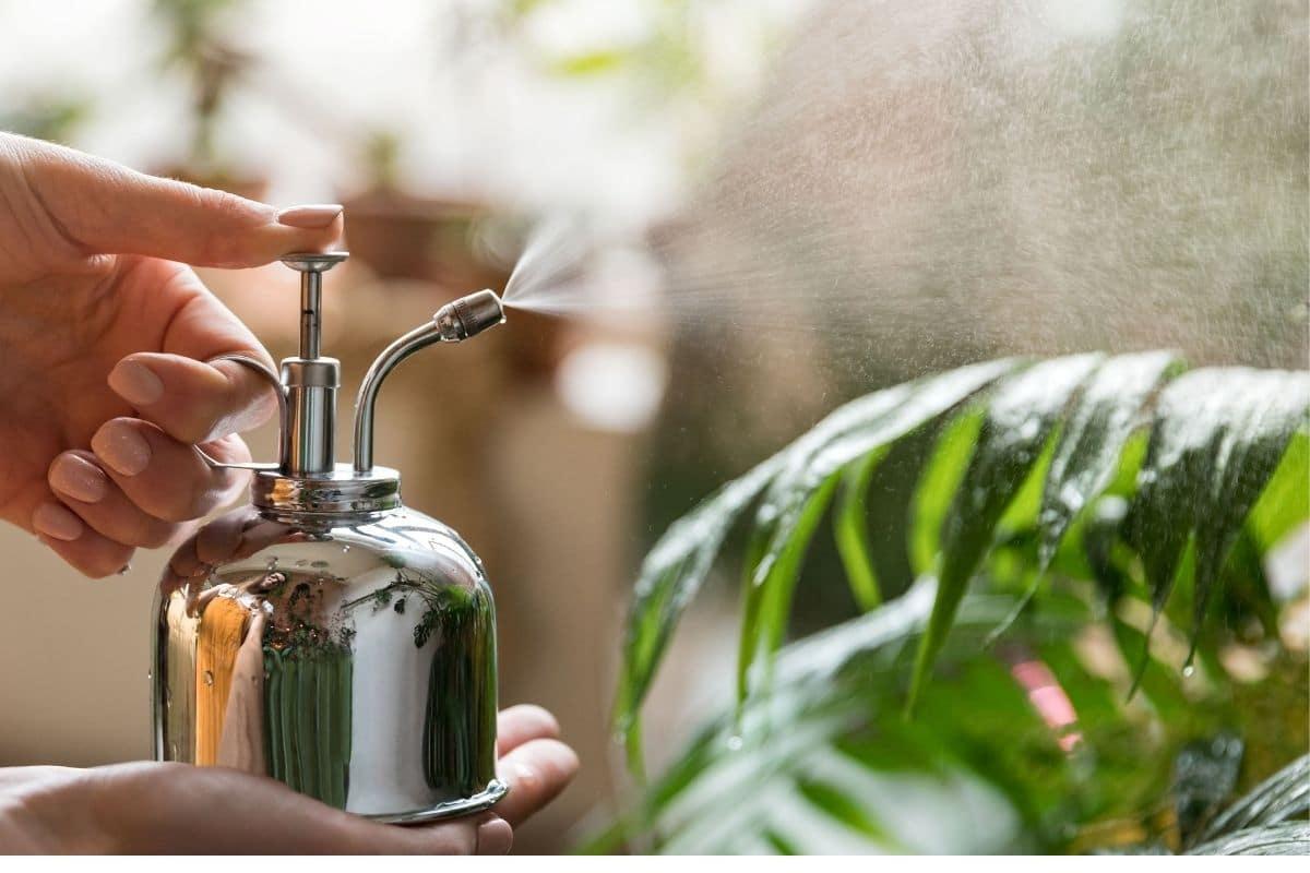 Những cách sử dụng giấm cực thú vị ít người biết để chăm sóc khu vườn thêm tươi tốt - Ảnh 9.