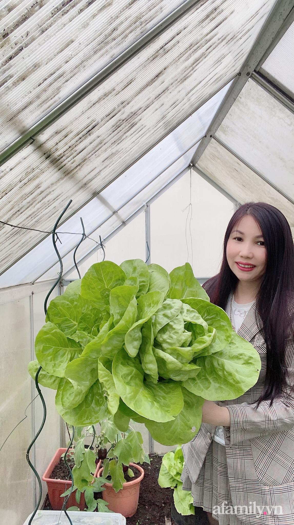 Bất ngờ trước lý do trồng cả vườn rau trái Việt quanh năm tốt tươi của mẹ đảm ở Séc - Ảnh 5.