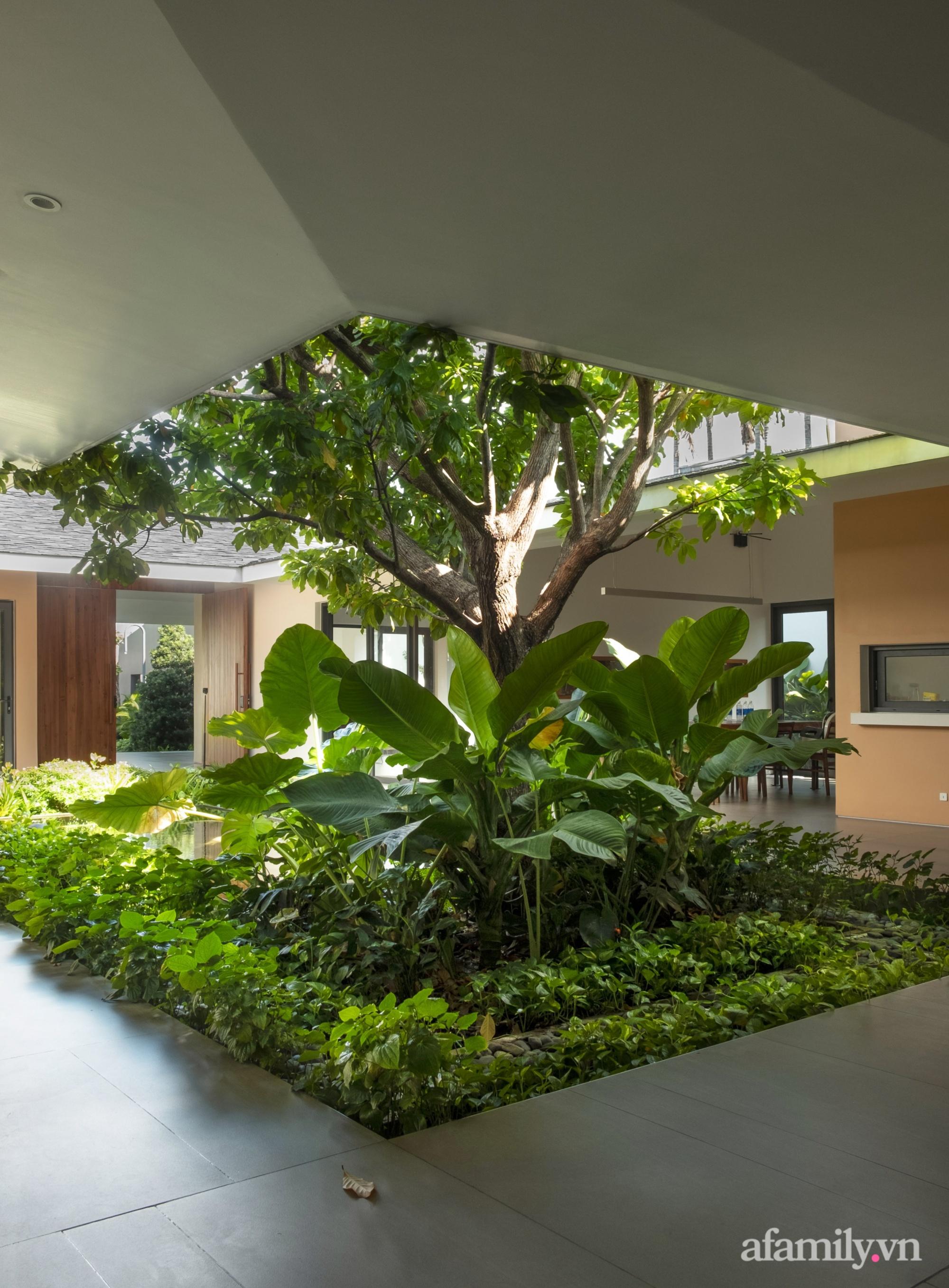 Ngôi nhà rợp mát bóng cây ở ngoại ô Sài Gòn tạo sự gắn kết cho gia đình 3 thế hệ - Ảnh 9.