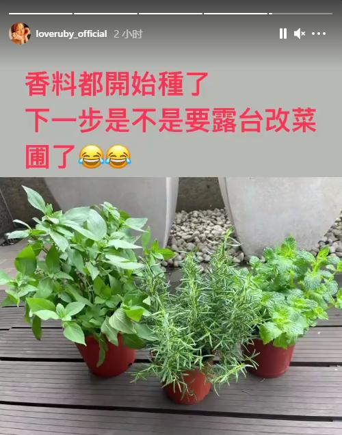 Lâm Tâm Như có chia sẻ đầu tiên sau tin đồn hôn nhân với Hoắc Kiến Hoa chỉ còn trên danh nghĩa - Ảnh 2.