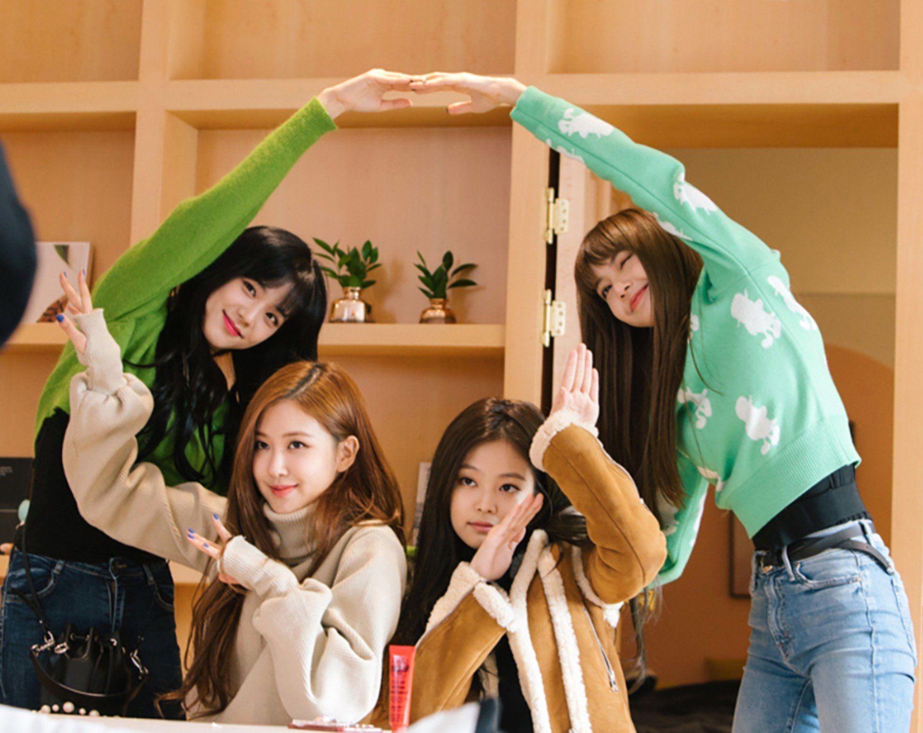 Cách tạo dáng của BLACKPINK đỉnh tới mức nào mà netizen khuyên nhóm làm người mẫu nếu lỡ... thất nghiệp? - Ảnh 15.