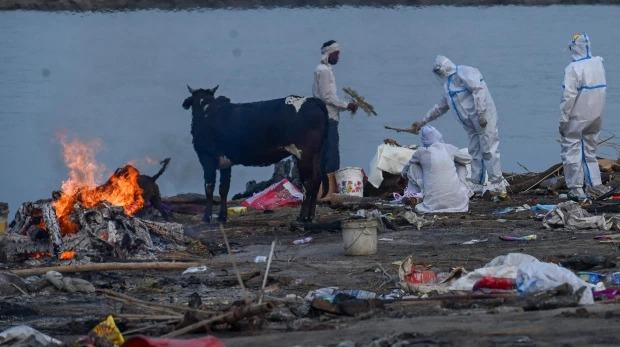 Thảm cảnh Covid-19 tại Ấn Độ ngay lúc này: Xác chết lộ ra khi nước dâng trên sông Hằng, cảnh tượng như trong phim xác sống - Ảnh 5.