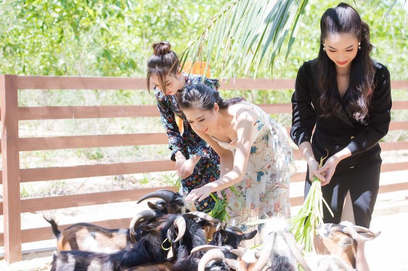 Lưu ngay 7 hành trình không thể bỏ lỡ ở thiên đường biển đảo Quy Nhơn - Ảnh 8.
