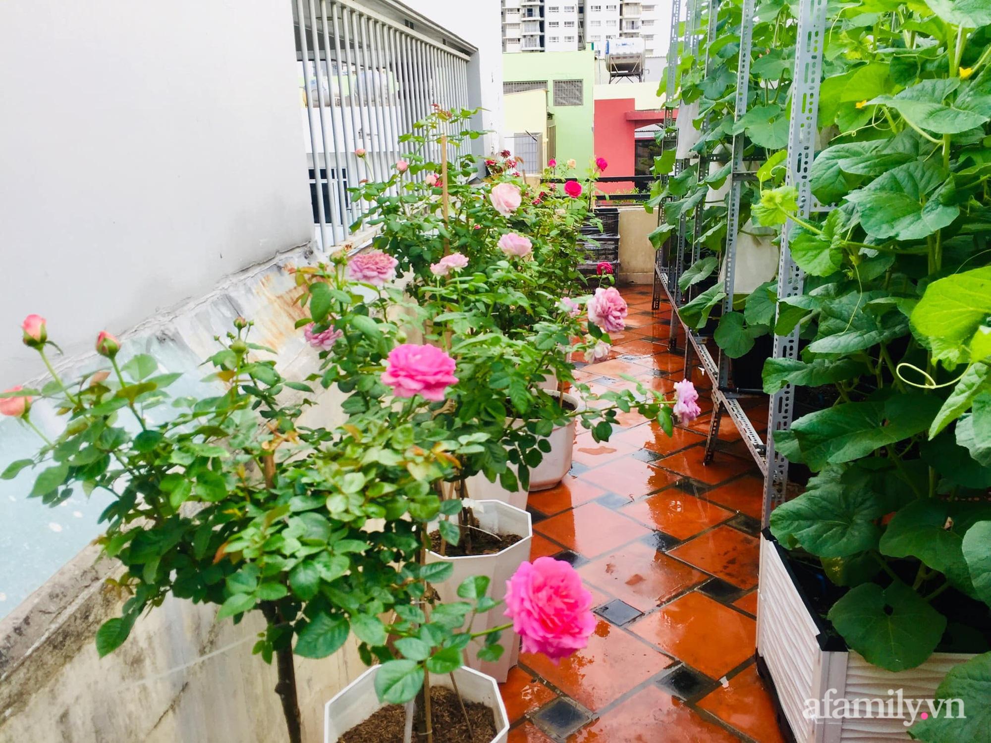 Ghé thăm sân thượng thu hoạch cả tạ dưa đủ loại của người phụ nữ đảm đang ở quận 6, Sài Gòn - Ảnh 20.