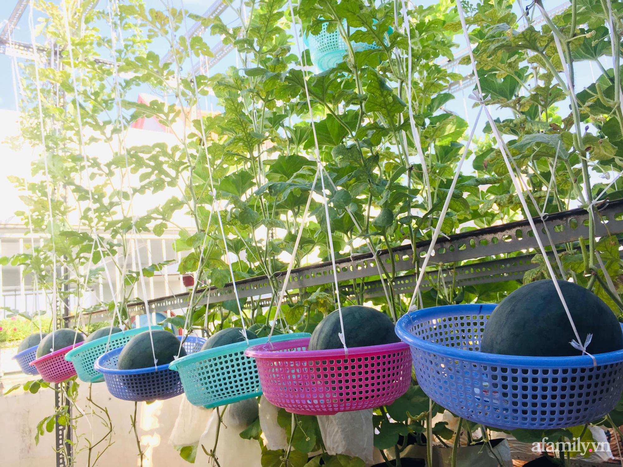 Ghé thăm sân thượng thu hoạch cả tạ dưa đủ loại của người phụ nữ đảm đang ở quận 6, Sài Gòn - Ảnh 5.