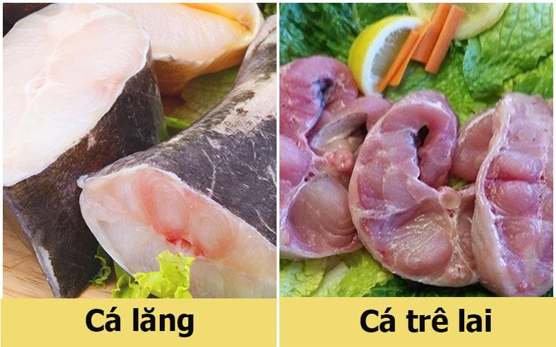 Mách bạn cách phân biệt nhanh cá lăng và cá trê lai đơn giản đến không ngờ