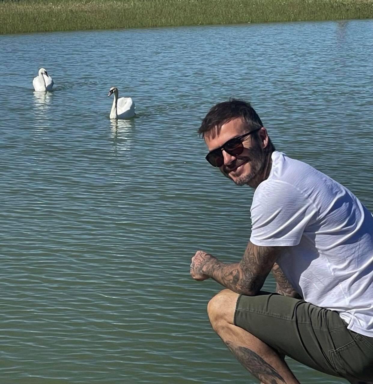 Cô út Harper Beckham sống ảo bên hồ thiên nga trong nhà nông thôn 195 tỷ, góc chụp dìm mà nhan sắc cân hết đỉnh ghê - Ảnh 3.